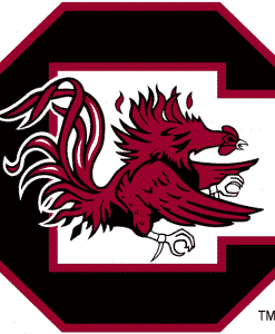 South Carolina Gamecocks Gear