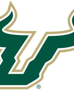 South Florida Bulls Gear
