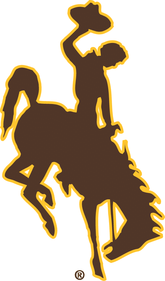 Wyoming Cowboys Gear